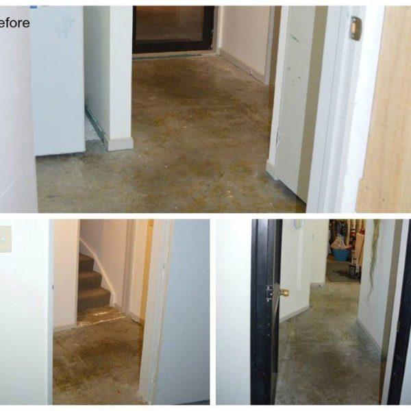 Gallery concrete polishing ec flooring contractors ltd for Polished concrete floors nz